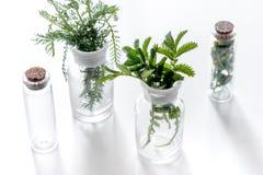 Nya medicinska örter i exponeringsglas på vit bakgrund Royaltyfria Foton