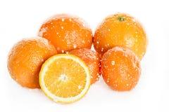 Nya mogna apelsiner med vattendroppar som isoleras på vit, nya frukter som faller i vattenfärgstänk Royaltyfria Foton