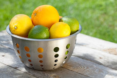 Nya mogna citrurs i durkslag arkivfoto