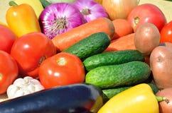 Nya mogna grönsaker Arkivfoto