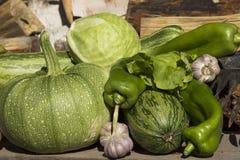 Nya mogna grönsaker Royaltyfria Bilder