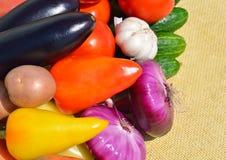 Nya mogna grönsaker på servetten Arkivfoton