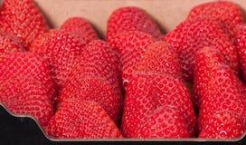 Nya mogna jordgubbar i en ask arkivfoto