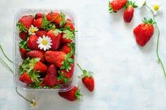 Nya mogna jordgubbar och kamomillblommor i plast- ask på blå bakgrund Arkivbilder