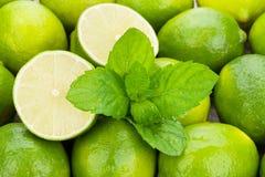 Nya mogna limefrukter med mintkaramellen Arkivbilder