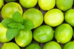 Nya mogna limefrukter med mintkaramellen Royaltyfri Foto