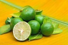 Nya mogna limefrukter på ett bananblad Royaltyfria Foton