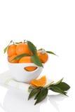 Nya mogna mandarines Royaltyfri Foto