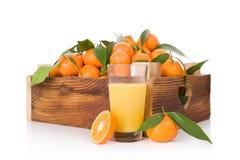 Nya mogna mandarines i träspjällåda Royaltyfri Foto