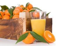 Nya mogna mandarines i träspjällåda Royaltyfri Fotografi