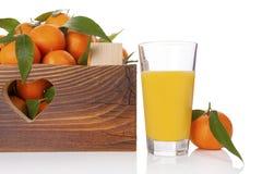Nya mogna mandarines i träspjällåda Arkivfoto