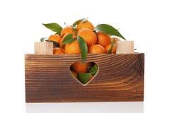 Nya mogna mandarines i träspjällåda Fotografering för Bildbyråer