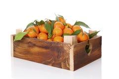 Nya mogna mandarines i träspjällåda Arkivbild