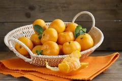 Nya mogna orange mandariner (tangerin) Fotografering för Bildbyråer