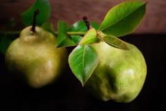 Nya mogna organiska päron på mörk bakgrund bantar mat Arkivbild