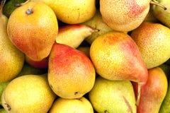 Nya mogna Pears Royaltyfri Fotografi