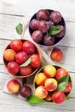 Nya mogna persikor och plommoner Royaltyfria Bilder