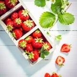 Nya mogna röda jordgubbar i askar royaltyfria bilder