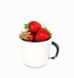 Nya mogna röda jordgubbar i emalj rånar över vit bakgrund Arkivbilder