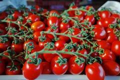 Nya mogna röda tomater i askar i hel försäljning marknadsför Arkivbild