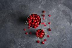 Nya mogna söta körsbär på mörk lantlig bakgrund Bästa sikt med kopieringsutrymme Royaltyfri Fotografi