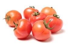 nya mogna tomater Arkivbild