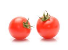 nya mogna tomater Arkivfoto