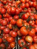 Nya mogna tomater i en ask på marknaden Arkivbild