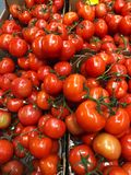 Nya mogna tomater i en ask på marknaden Arkivfoton