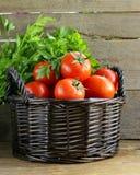 Nya mogna tomater i en korg Fotografering för Bildbyråer