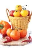 Tomater Fotografering för Bildbyråer