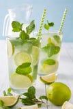 Nya Mojito med limefrukt och mintkaramellen background card congratulation invitation Arkivbilder