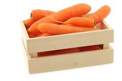 Nya morötter i en träask Royaltyfri Foto