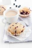 nya muffiner Arkivfoton