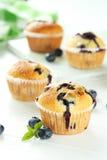 nya muffiner Arkivbilder