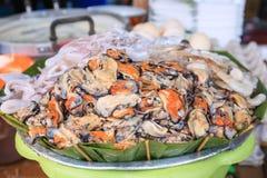 Nya musslor på korg i marknad Royaltyfria Bilder