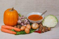 nya nuts soupgrönsaker Arkivbilder