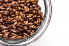 Nya och jordgrillade kaffebönor från kaffeväxten inom en cylindrisk exponeringsglaskrus royaltyfri bild