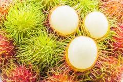 Nya och mogna peelrambutans, läckra frukter för asiat Royaltyfri Bild