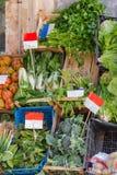 Nya och organiska grönsaker på bondemarknaden arkivfoto