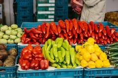 Nya och organiska grönsaker på bondemarknaden Naturlig jordbruksprodukter paprika Peppar Arkivfoto