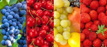 Nya och sunda frukter för panorama- samling Arkivfoto