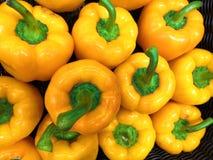 Nya och sunda gula peppar arkivbild