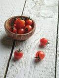 Nya och sunda tomater royaltyfri fotografi