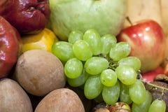 Nya olika frukter Fotografering för Bildbyråer