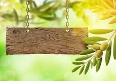 Nya oliv, olivträd och träbräde arkivfoto