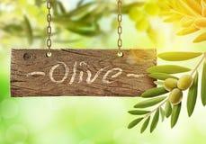 Nya oliv, olivträd och träbräde arkivbilder