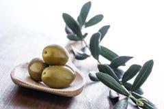 nya olivgrön arkivfoton