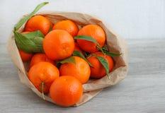 Nya orange mandarinfrukter Arkivbild