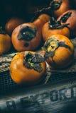 Nya orange persimoner Royaltyfri Foto